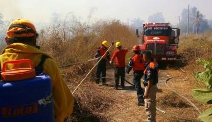 Guerrero-incendio forestal_800x400