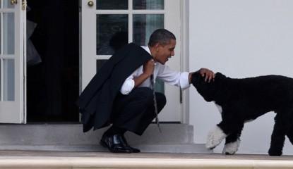 obama mascotas_800x400