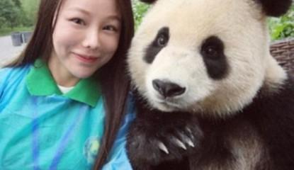 oso panda selfies viral_800x400