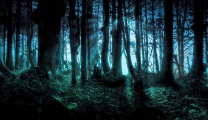 terror bosque_800x400
