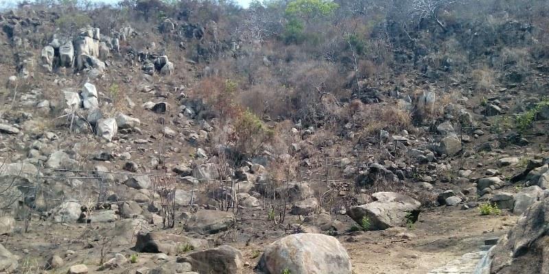 Combaten incendio en Parque Nacional El Veladero, en Acapulco