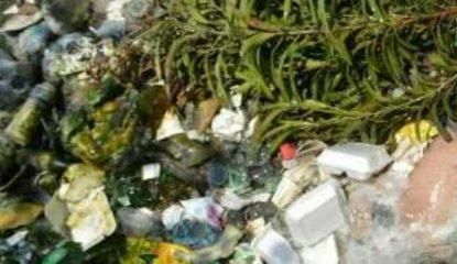 asesinado 415x240 - A pedradas asesinan a menor de edad en Acapulco