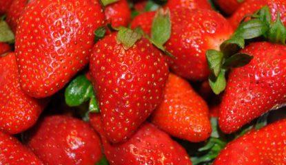 fresas Noticias 415x240 - Fresas para combatir el cáncer de mama