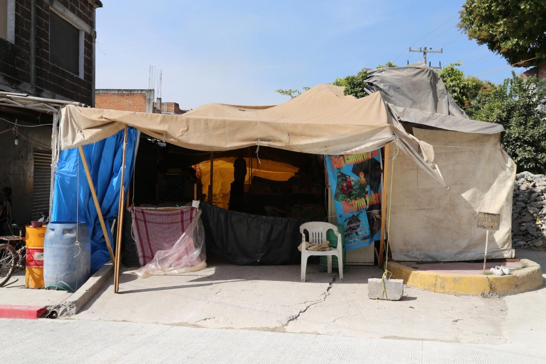 """Don Bertín y sus """"perritos"""" viven en la calle""""."""